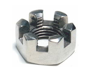 ASME SB574 Hastelloy C-276 Slotted Nut